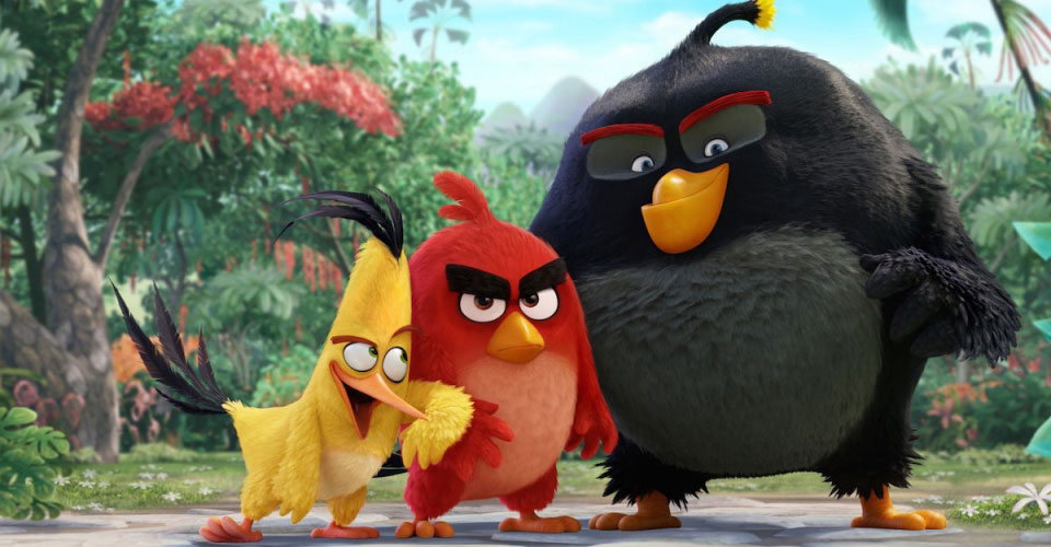 Angry Birds, Le film, mais pas que !