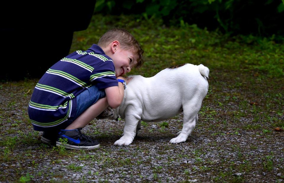 Un animal est un complice potentiel pour votre enfant.